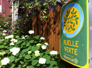 Ruelle-verte-Montreal