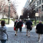 A longer season for 20 years of walking tours