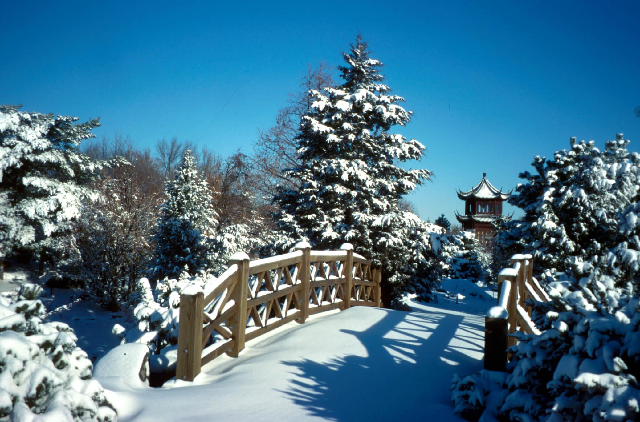 Jardin de Chine du jardin botanique de Montréal